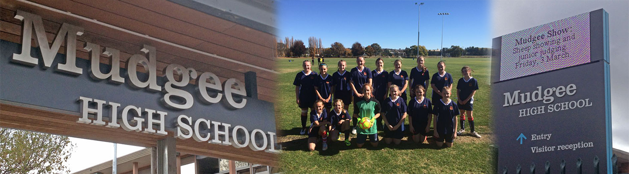 collage of school name with school sports team